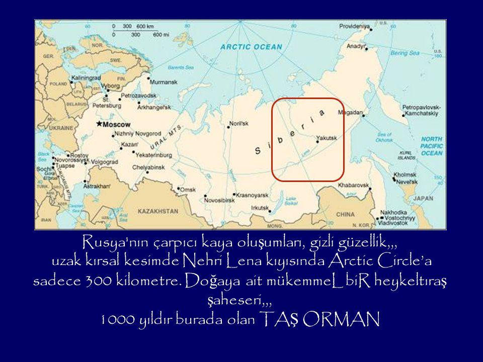 Rusya nın çarpıcı kaya olu ş umları, gizli güzellik,,, uzak kırsal kesimde Nehri Lena kıyısında Arctic Circle'a sadece 300 kilometre.