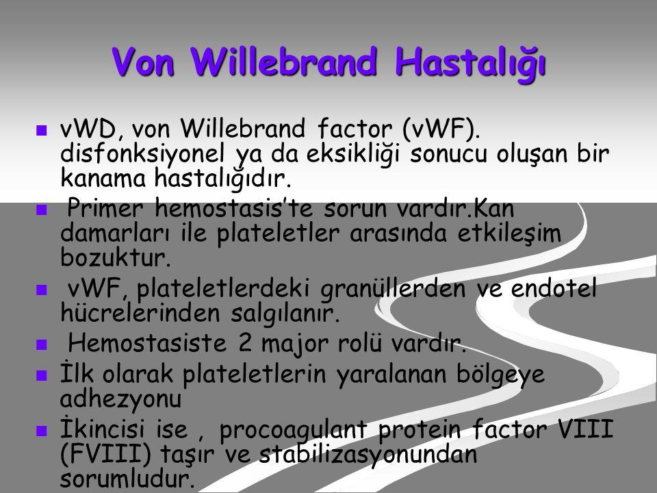 Von Willebrand Hastalığı vWD, von Willebrand factor (vWF).