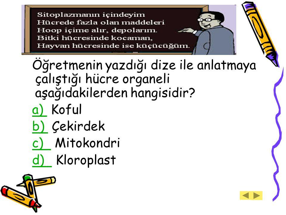 Öğretmenin yazdığı dize ile anlatmaya çalıştığı hücre organeli aşağıdakilerden hangisidir? a) Koful a) b) Çekirdek b) c) Mitokondri c) d) Kloroplastd)