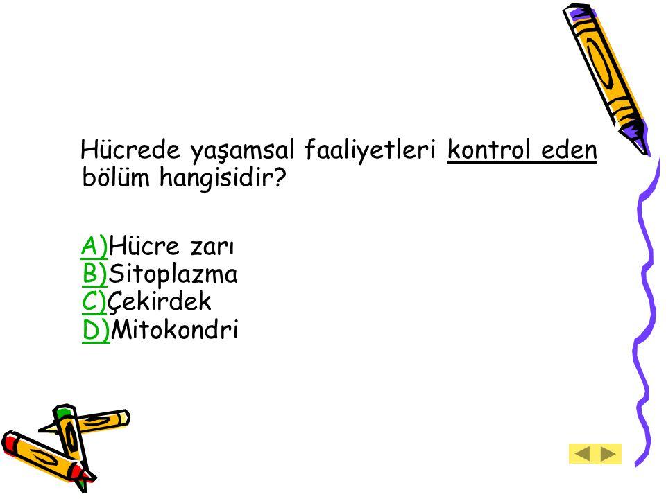 Hücrede yaşamsal faaliyetleri kontrol eden bölüm hangisidir? A)Hücre zarı B)Sitoplazma C)Çekirdek D)MitokondriA) B) C) D)