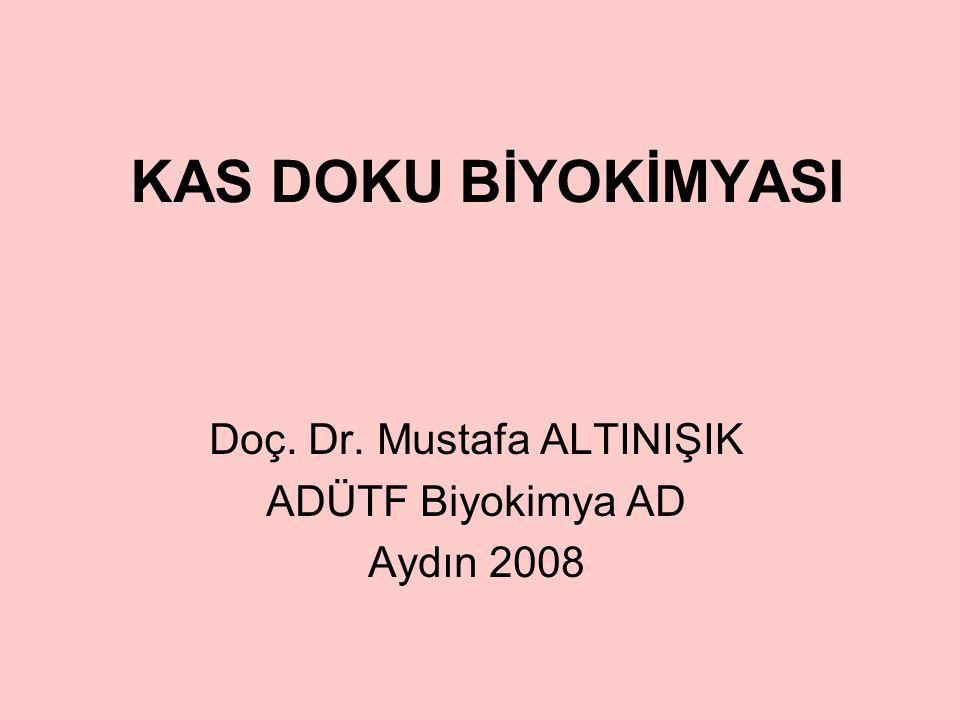 KAS DOKU BİYOKİMYASI Doç. Dr. Mustafa ALTINIŞIK ADÜTF Biyokimya AD Aydın 2008