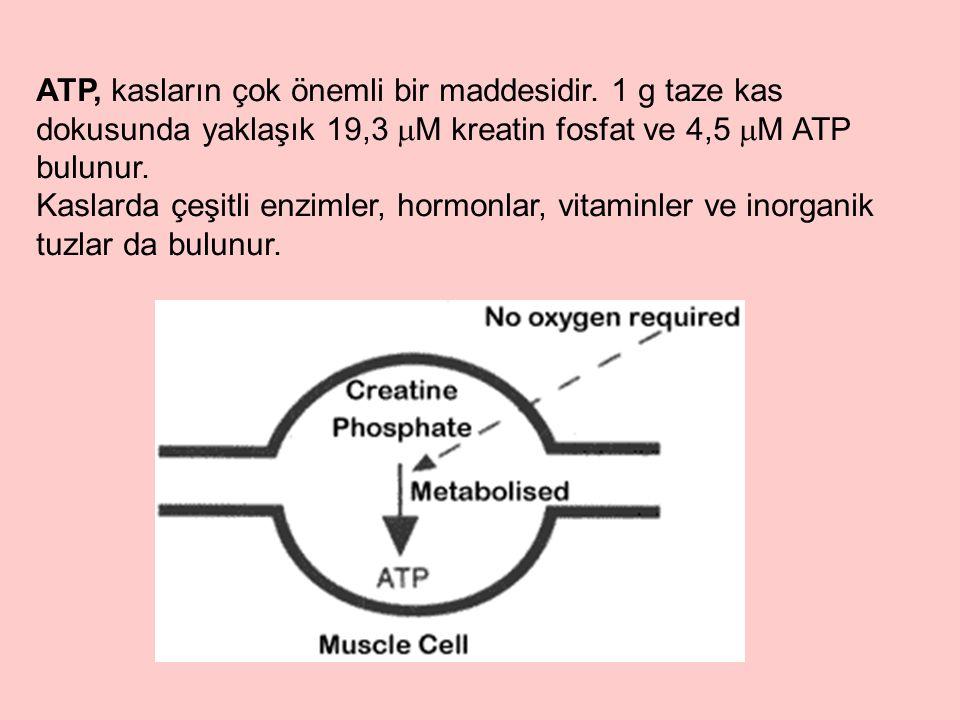 ATP, kasların çok önemli bir maddesidir.