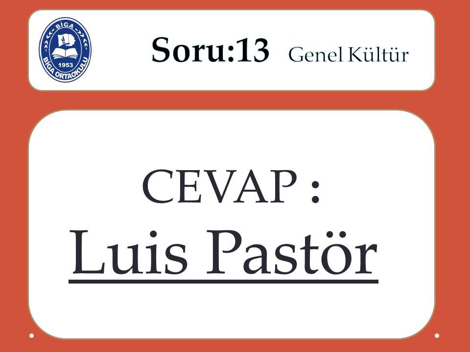 CEVAP : Luis Pastör