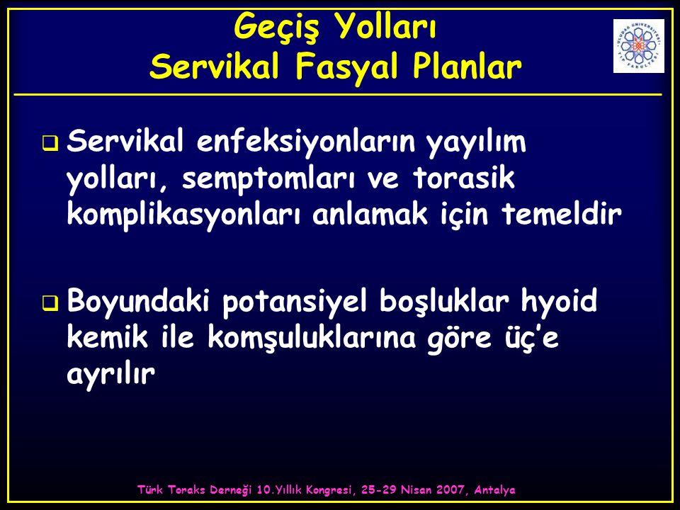 Türk Toraks Derneği 10.Yıllık Kongresi, 25-29 Nisan 2007, Antalya Geçiş Yolları Servikal Fasyal Planlar  Servikal enfeksiyonların yayılım yolları, se