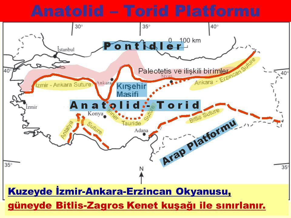 ANATOLİD-TORİD PLATFORMUNUN KUZEY KENARI