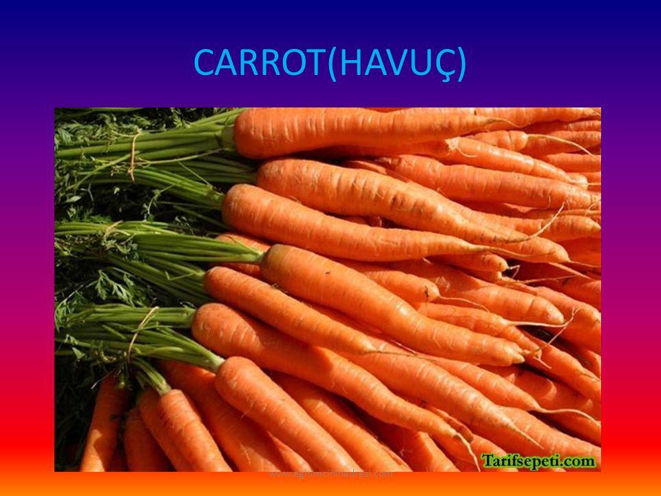 CARROT(HAVUÇ) www.egitimcininadresi.com