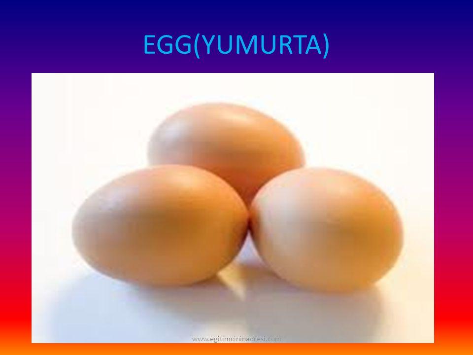 EGG(YUMURTA) www.egitimcininadresi.com