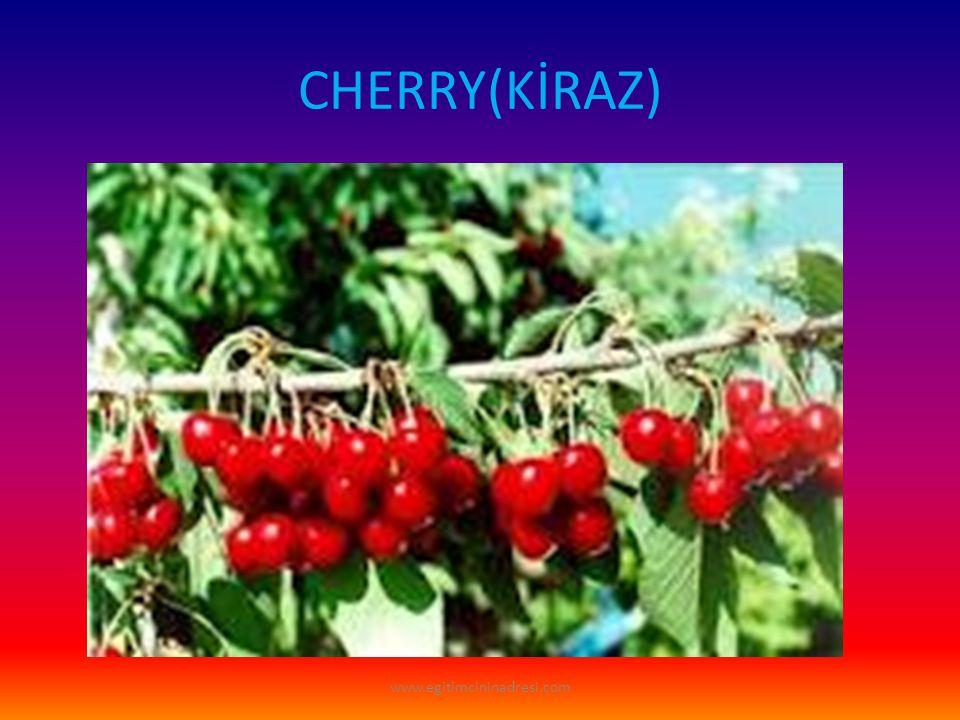 CHERRY(KİRAZ) www.egitimcininadresi.com