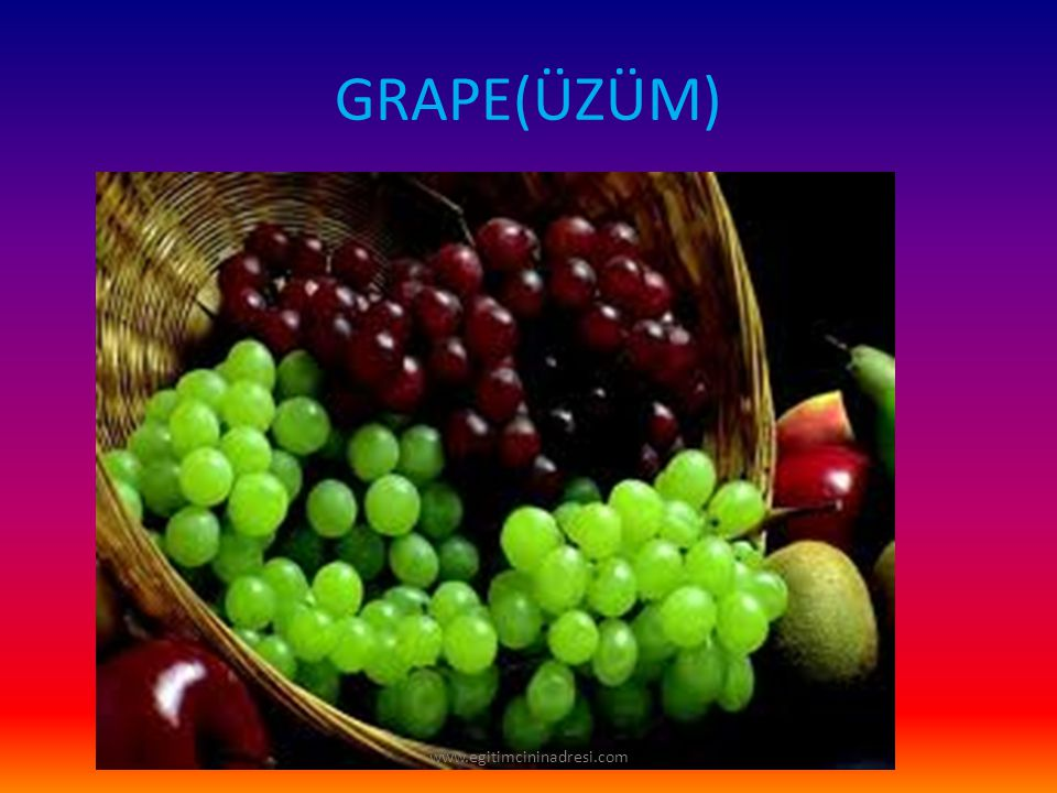 GRAPE(ÜZÜM) www.egitimcininadresi.com