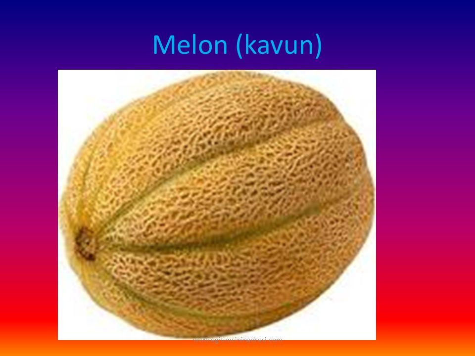 Melon (kavun) www.egitimcininadresi.com
