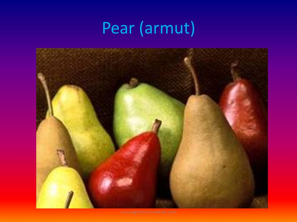 Pear (armut) www.egitimcininadresi.com