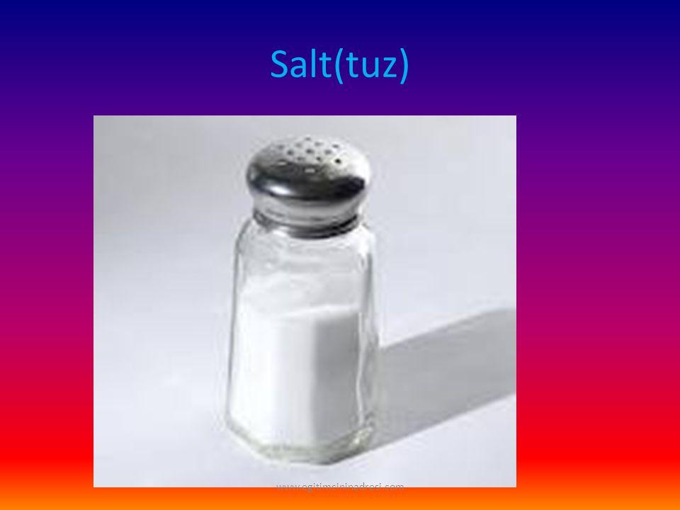 Salt(tuz) www.egitimcininadresi.com