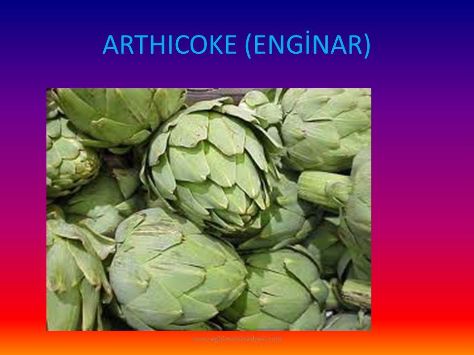 ARTHICOKE (ENGİNAR) www.egitimcininadresi.com
