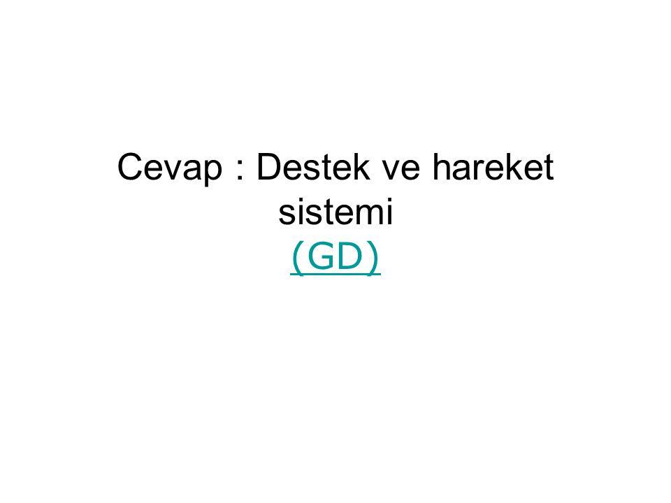 Cevap : Destek ve hareket sistemi (GD) (GD)