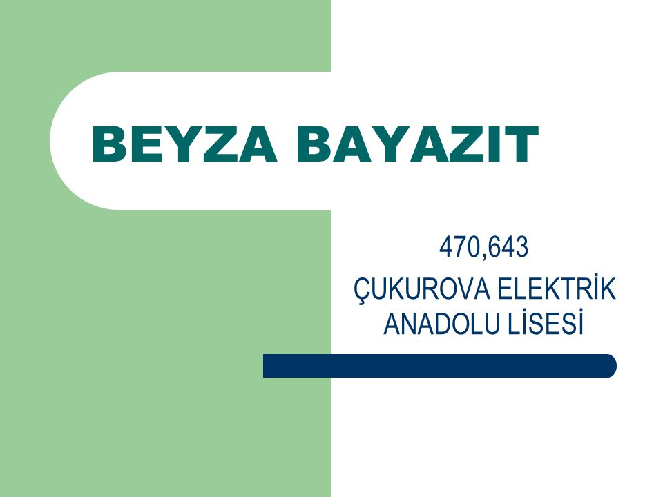 BEYZA BAYAZIT 470,643 ÇUKUROVA ELEKTRİK ANADOLU LİSESİ