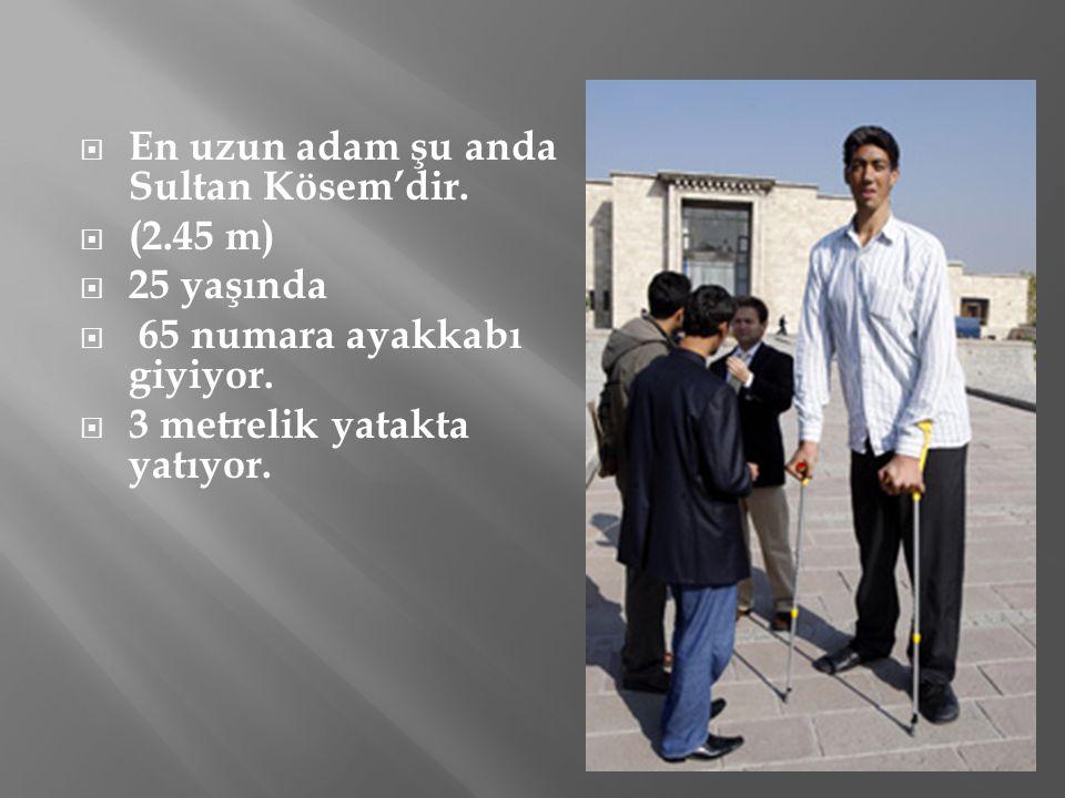  En uzun adam şu anda Sultan Kösem'dir.  (2.45 m)  25 yaşında  65 numara ayakkabı giyiyor.  3 metrelik yatakta yatıyor.