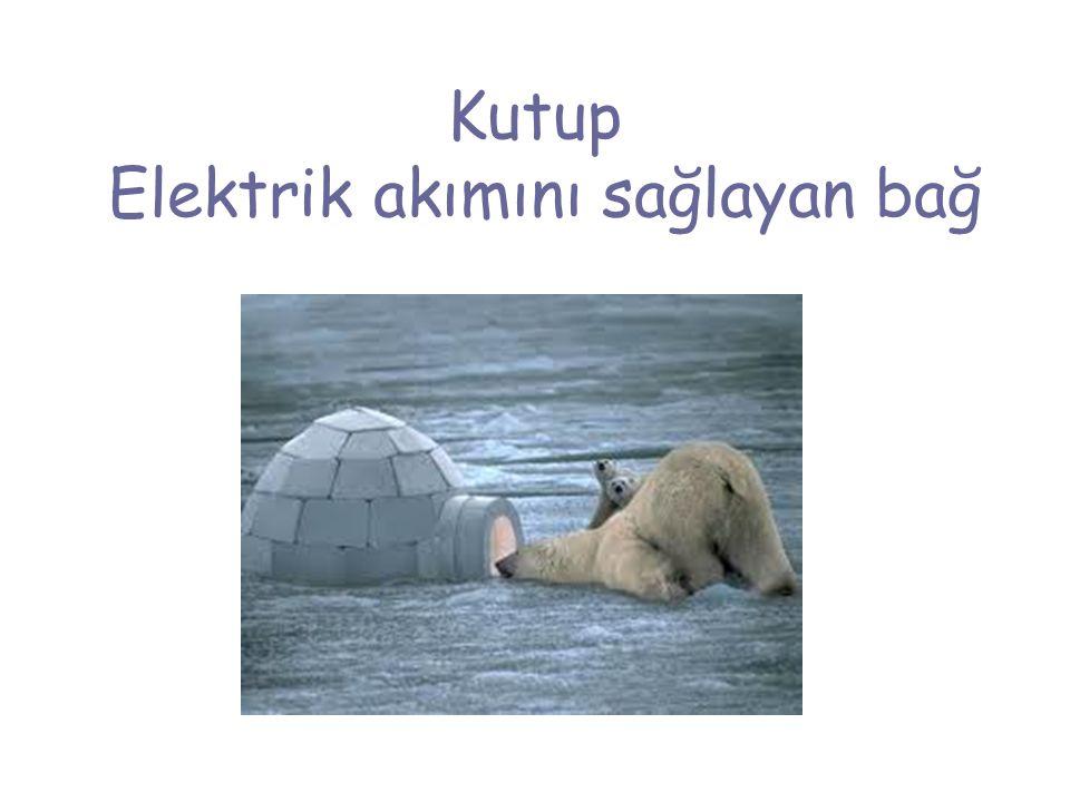 Kutup Elektrik akımını sağlayan bağ