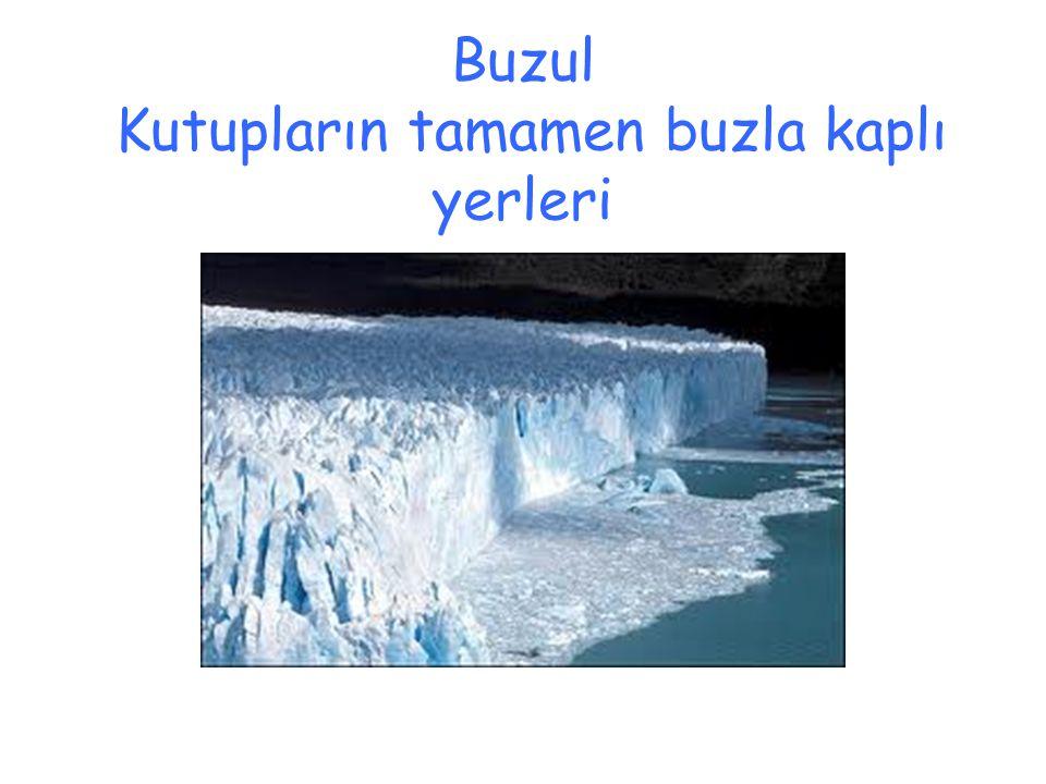 Buzul Kutupların tamamen buzla kaplı yerleri