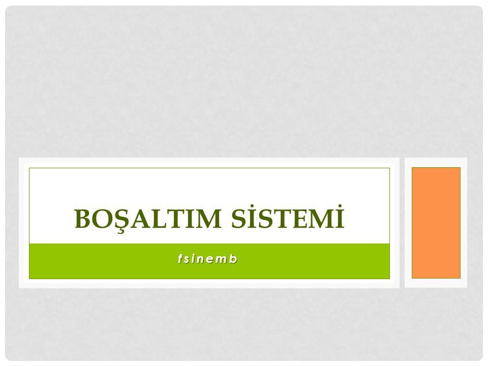fsinemb BOŞALTIM SİSTEMİ
