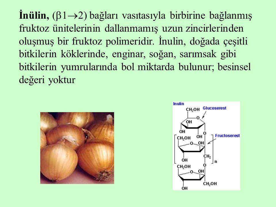 İnülin, (  1  2) bağları vasıtasıyla birbirine bağlanmış fruktoz ünitelerinin dallanmamış uzun zincirlerinden oluşmuş bir fruktoz polimeridir.