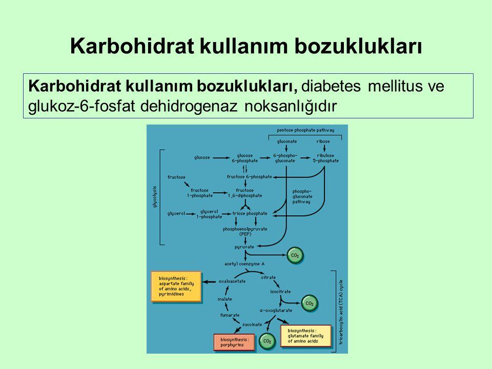 Karbohidrat kullanım bozuklukları Karbohidrat kullanım bozuklukları, diabetes mellitus ve glukoz-6-fosfat dehidrogenaz noksanlığıdır