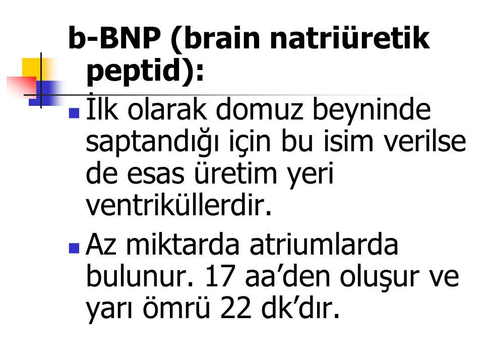 b-BNP (brain natriüretik peptid): İlk olarak domuz beyninde saptandığı için bu isim verilse de esas üretim yeri ventriküllerdir. Az miktarda atriumlar