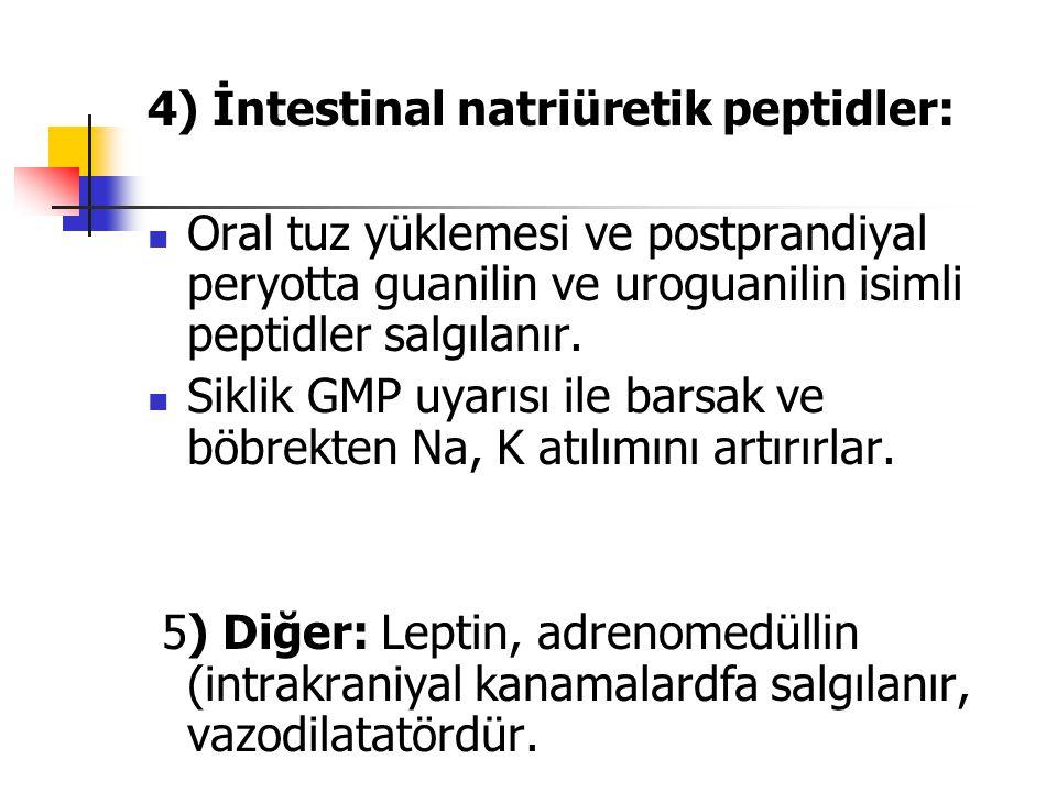 4) İntestinal natriüretik peptidler: Oral tuz yüklemesi ve postprandiyal peryotta guanilin ve uroguanilin isimli peptidler salgılanır. Siklik GMP uyar