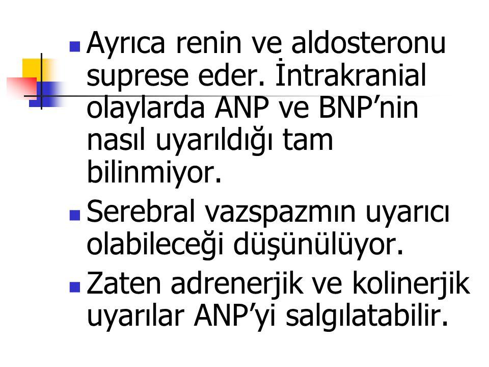 Ayrıca renin ve aldosteronu suprese eder. İntrakranial olaylarda ANP ve BNP'nin nasıl uyarıldığı tam bilinmiyor. Serebral vazspazmın uyarıcı olabilece