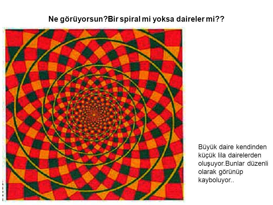 Ne görüyorsun Bir spiral mi yoksa daireler mi .