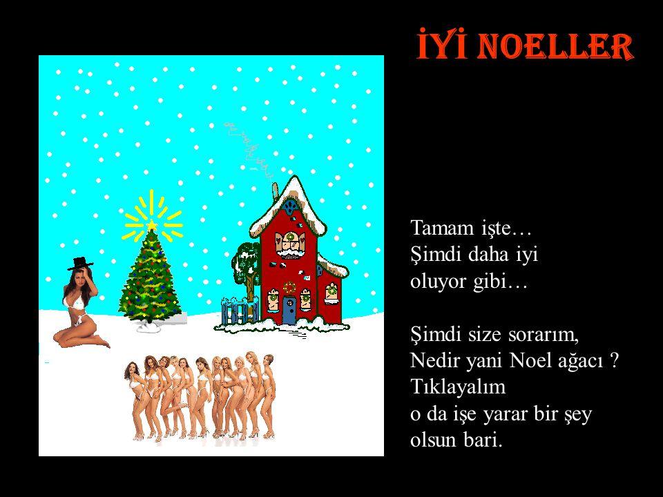 İ Y İ NOELLER Tamam işte… Şimdi daha iyi oluyor gibi… Şimdi size sorarım, Nedir yani Noel ağacı .