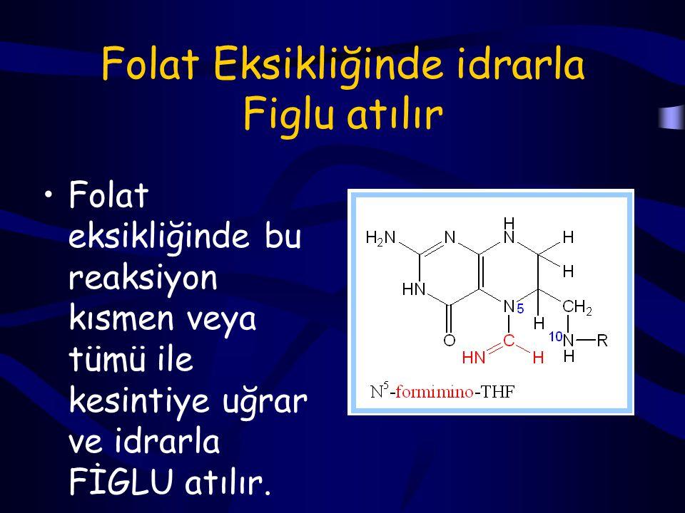 Histidin bu reaksiyonda tek karbonlu bir grubunu (formimino) diğer biosentez tepkimelerinde kullanılmak üzere THF'a aktarmıştır.