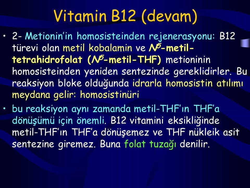 Vitamin B12 Bu dersimizde vit B12'nin kofaktör olarak rol aldığı iki önemli reaksiyonu gördük.