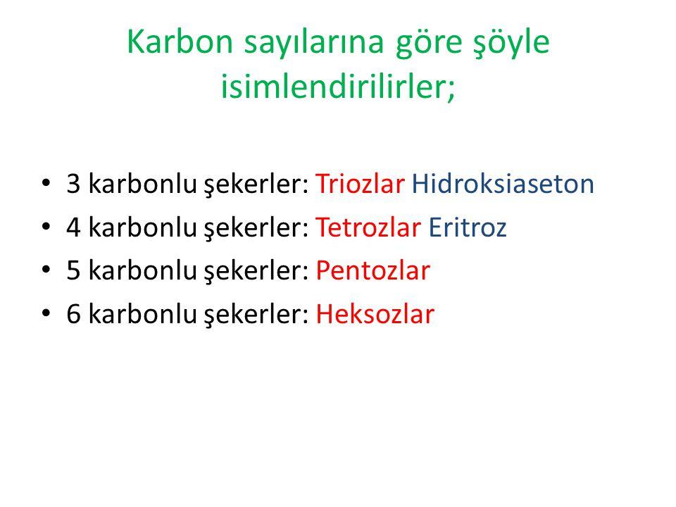 Karbon sayılarına göre şöyle isimlendirilirler; 3 karbonlu şekerler: Triozlar Hidroksiaseton 4 karbonlu şekerler: Tetrozlar Eritroz 5 karbonlu şekerle