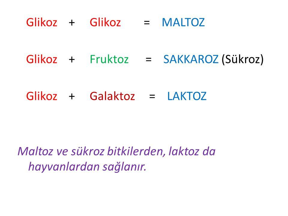 Glikoz + Glikoz = MALTOZ Glikoz + Fruktoz = SAKKAROZ (Sükroz) Glikoz + Galaktoz = LAKTOZ Maltoz ve sükroz bitkilerden, laktoz da hayvanlardan sağlanır