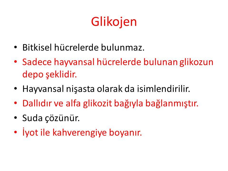 Glikojen Bitkisel hücrelerde bulunmaz. Sadece hayvansal hücrelerde bulunan glikozun depo şeklidir. Hayvansal nişasta olarak da isimlendirilir. Dallıdı