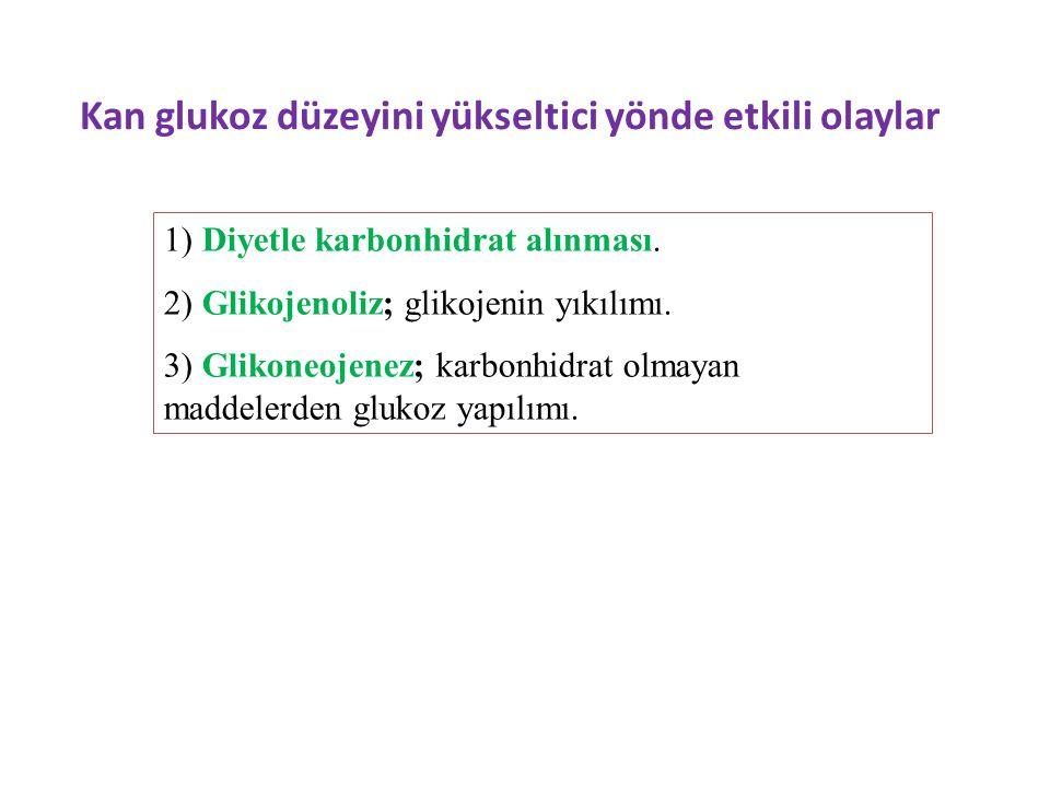 Kan glukoz düzeyini yükseltici yönde etkili olaylar 1) Diyetle karbonhidrat alınması. 2) Glikojenoliz; glikojenin yıkılımı. 3) Glikoneojenez; karbonhi