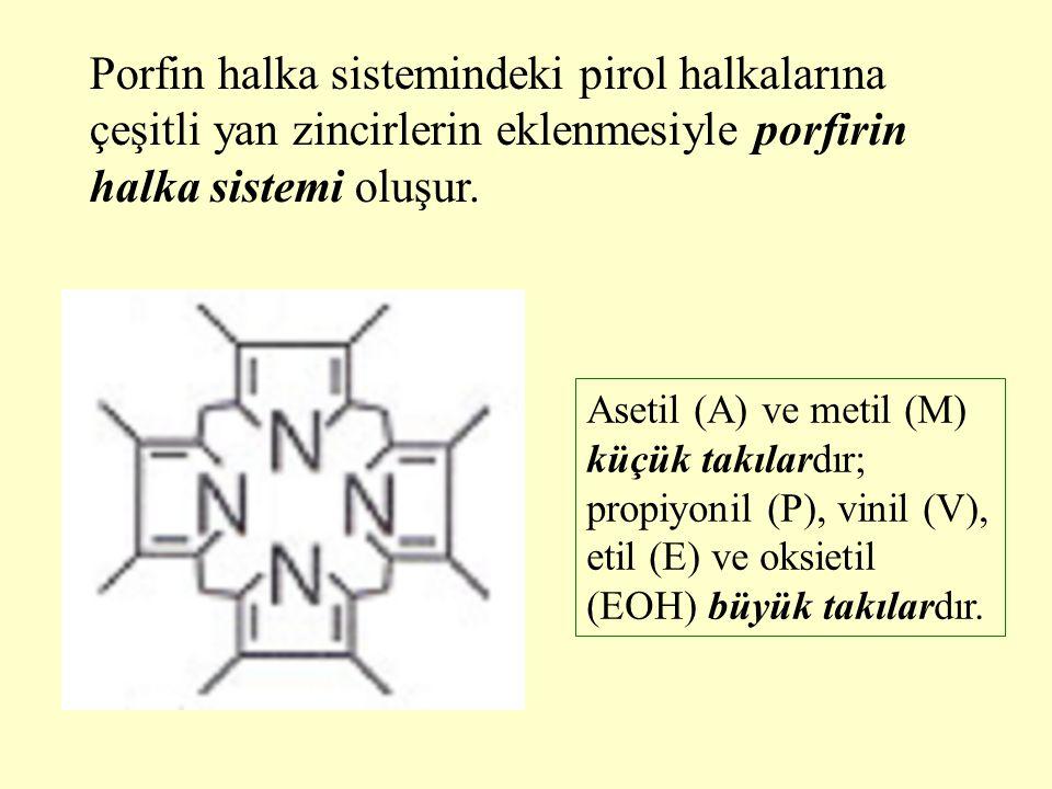 Porfirinler, porfirin halka sistemini oluşturan pirol halkalarına bağlı takıların türüne göre isimlendirilirler ve sınıflandırılırlar; ayrıca her sınıfın alt sınıfları vardır takıların diziliş sırasına göre çeşitli izomer şekiller oluşur ki doğada en çok tipI ve tip III izomer şekiller bulunur