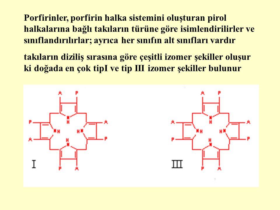 Üroporfirinler (URO) koproporfirinler (KOPRO) ve protoporfirinler (PROTO), üç ana porfirin türüdürler