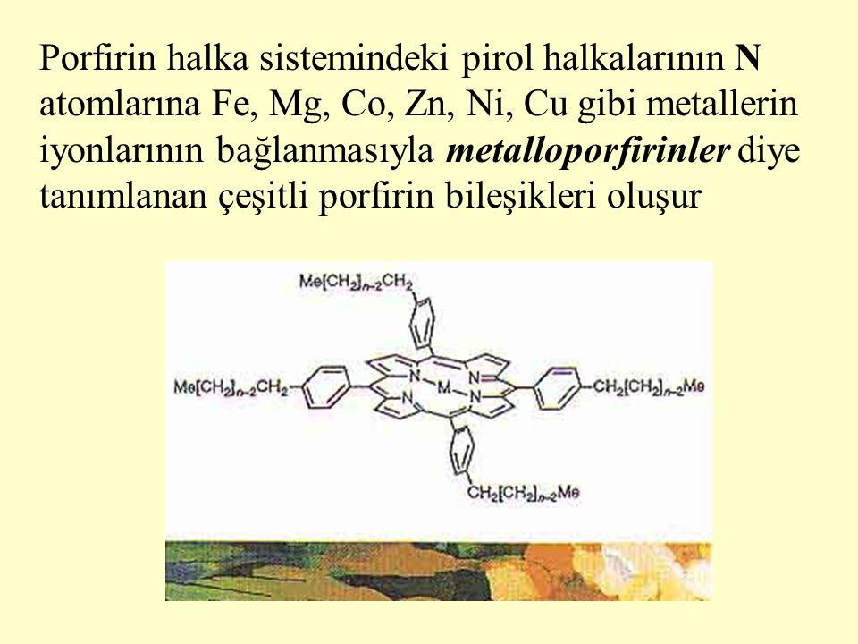 En yaygın olarak bulunan biyolojik metalloporfirinler demir ve magnezyum içerenlerdir