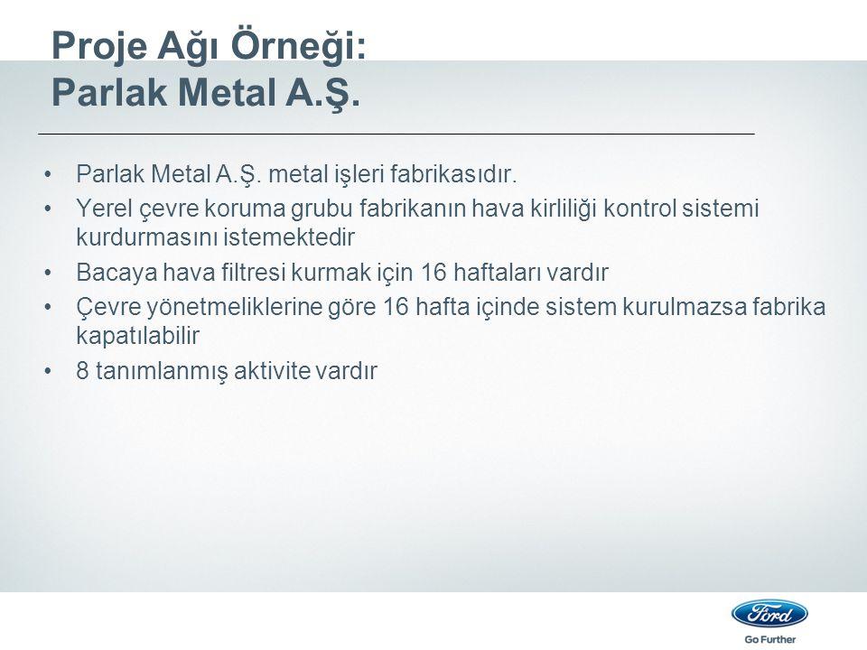 Proje Ağı Örneği: Parlak Metal A.Ş. Parlak Metal A.Ş. metal işleri fabrikasıdır. Yerel çevre koruma grubu fabrikanın hava kirliliği kontrol sistemi ku
