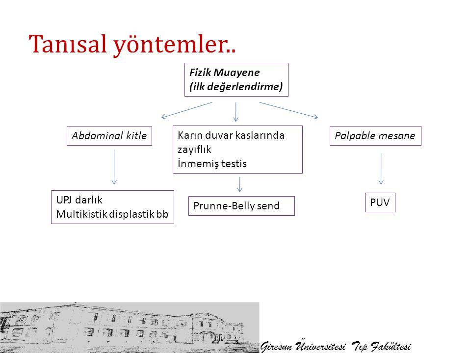 Tanısal yöntemler.. Giresun Üniversitesi Tıp Fakültesi Fizik Muayene (ilk değerlendirme) Abdominal kitlePalpable mesane UPJ darlık Multikistik displas
