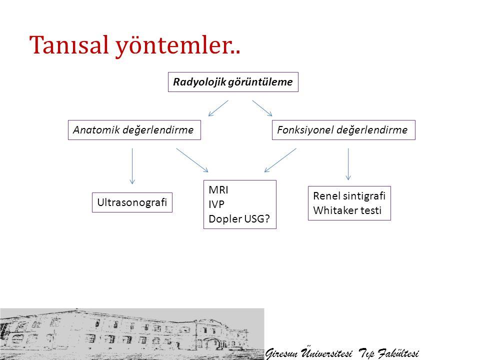 Tanısal yöntemler.. Giresun Üniversitesi Tıp Fakültesi Radyolojik görüntüleme Anatomik değerlendirmeFonksiyonel değerlendirme Ultrasonografi Renel sin