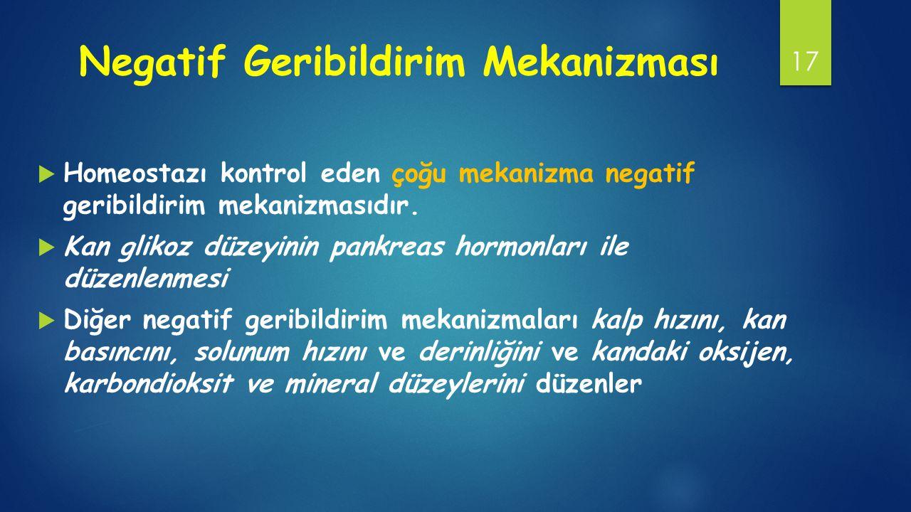 Negatif Geribildirim Mekanizması  Homeostazı kontrol eden çoğu mekanizma negatif geribildirim mekanizmasıdır.  Kan glikoz düzeyinin pankreas hormonl