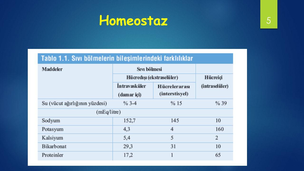 Homeostaz 5