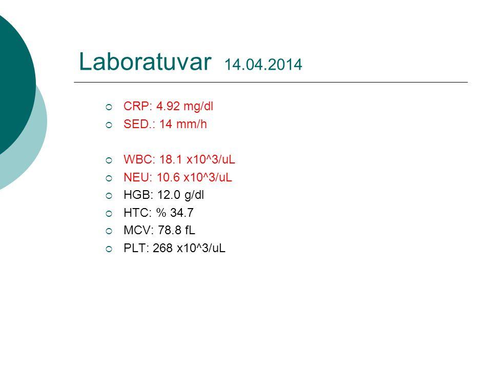 Laboratuvar 14.04.2014  CRP: 4.92 mg/dl  SED.: 14 mm/h  WBC: 18.1 x10^3/uL  NEU: 10.6 x10^3/uL  HGB: 12.0 g/dl  HTC: % 34.7  MCV: 78.8 fL  PLT