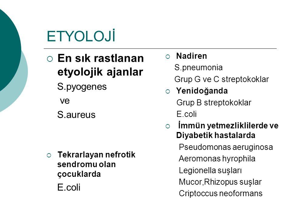 ETYOLOJİ  En sık rastlanan etyolojik ajanlar S.pyogenes ve S.aureus  Tekrarlayan nefrotik sendromu olan çocuklarda E.coli  Nadiren S.pneumonia Grup