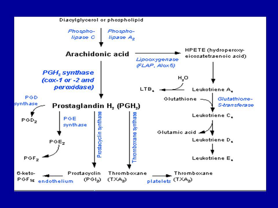 Prekürsör yağ asidleri: 1) Araşidonik asid (20:4n-6) 2) 5,8,11,14,17-eikozapentaenoik asid (20:5n-3) (EPA) 3) 8,11,14-eikozatrienoik asid (20:3n-6) -Yukarıda belirtilen yağ asidleri, eikozanoidlerin biyosentezi (onlara dönüşümleri) sırasında satürasyon sonucu ikişer çift bağ kaybederler.