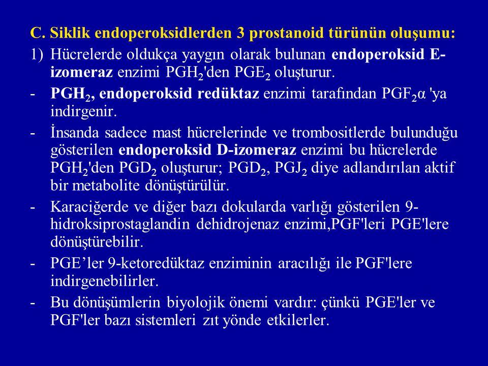 2) Esas olarak damar ve kapiler endotelinde yerleşmiş bulunan prostasiklin sentaz enzimi PGH 2 'yi stabil-olmayan prostasiklin e (PGİ 2 'ye) çevirir.