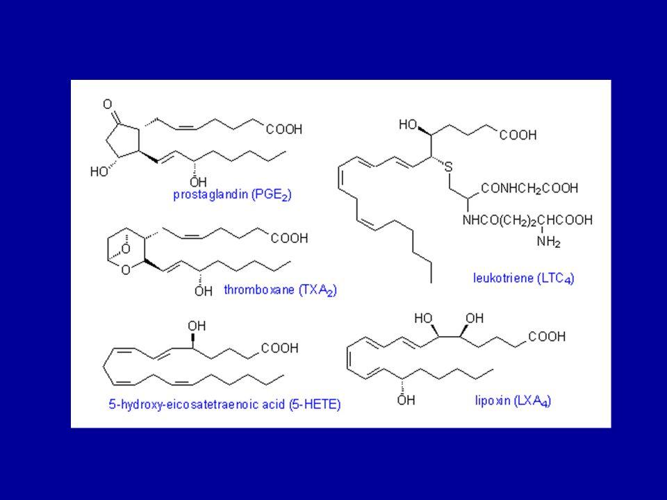 SALIVERİLME VE METABOLİZMA (İNAKTİVASYON) Prostaglandinler sentez edildikleri dokularda depolanmaksızın salıverilirler.
