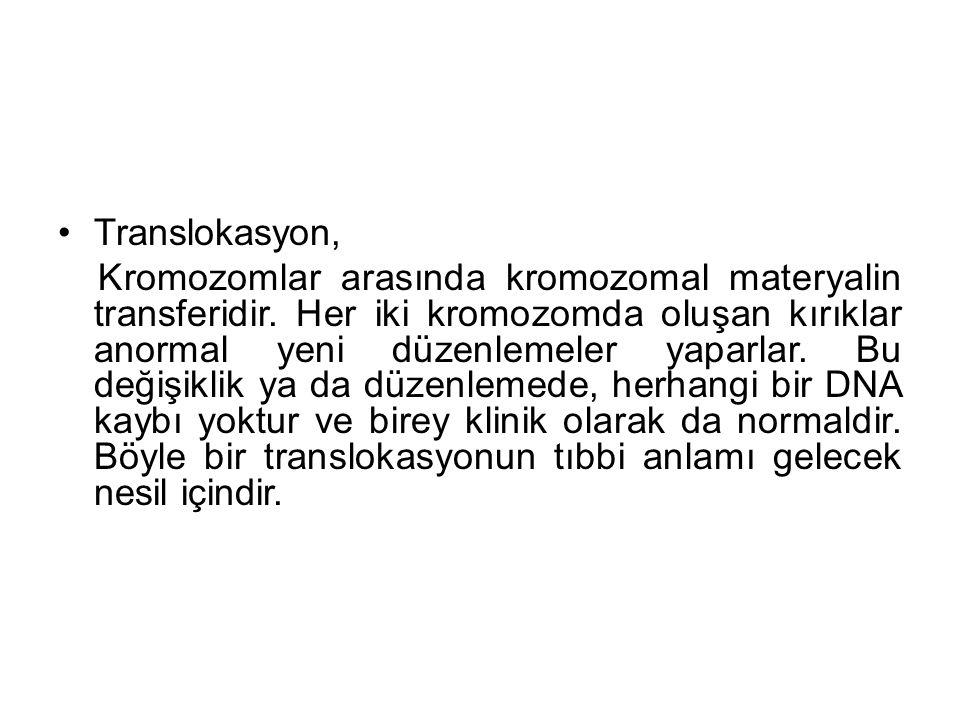 Translokasyon, Kromozomlar arasında kromozomal materyalin transferidir.